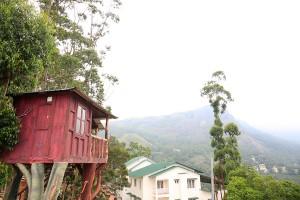 Tree- House